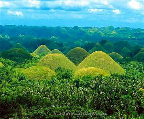 Nature tours bohol 004
