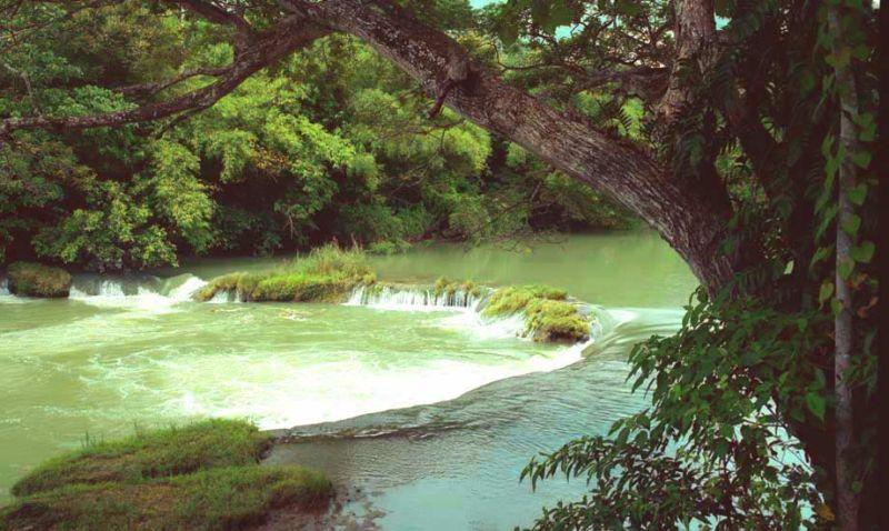 Loboc river cruise bohol 018