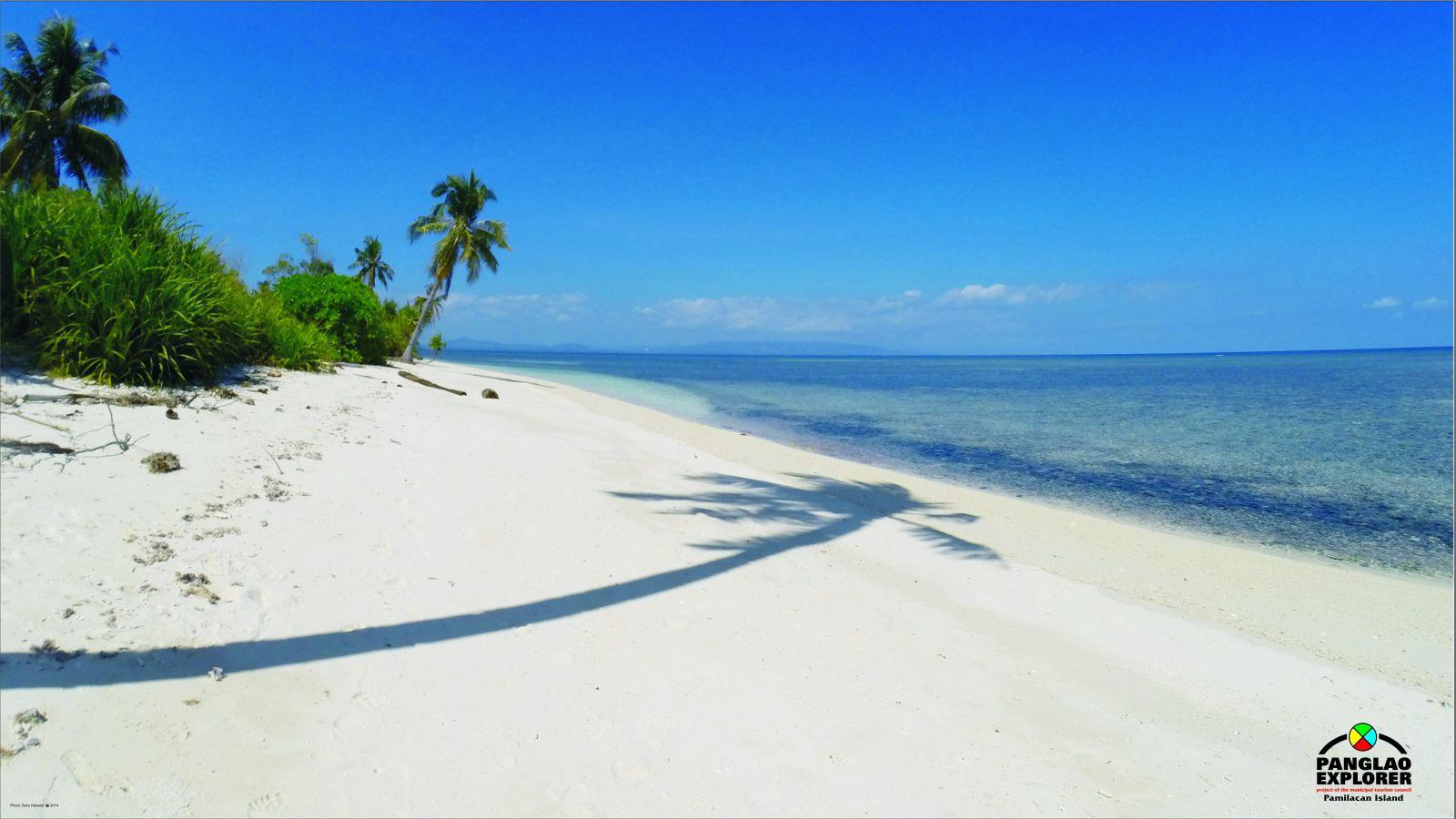 Pamilacan island beach bohol