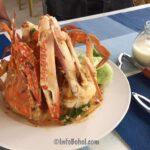 The thai basil restaurant panglao island bohol philippines033