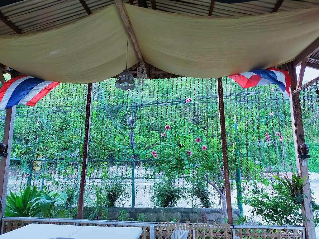 The thai basil restaurant panglao island bohol philippines055